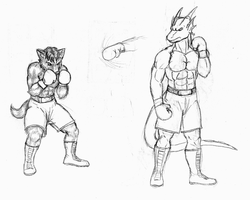 furry boxing fighters by NCredibleCarl