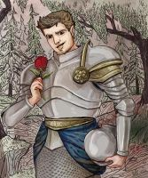 brave Ser Knight of the Ladies by amiima