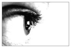 Yet Another Eye Photo by shmoo