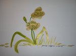 Gold and green tiger lilies by Blabbitz