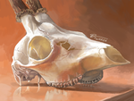 12. Ambient Deer Skull [3DS] by Twarda8