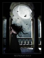 Moonlight elegy by Animamorta