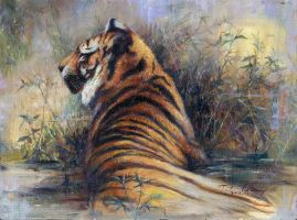 Staring - Tiger by cheungchungtat