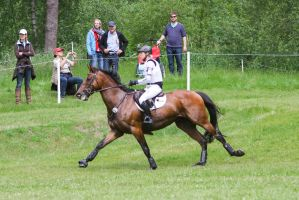 3DE Ingrid Klimke Hale Bob Cross Country 26 by LuDa-Stock