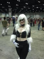 Megacon 2014: Black Cat cosplay by Oblivion-Evil