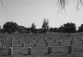 natcemeterystock by avataria