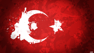 Turkish Flag by AY-Deezy