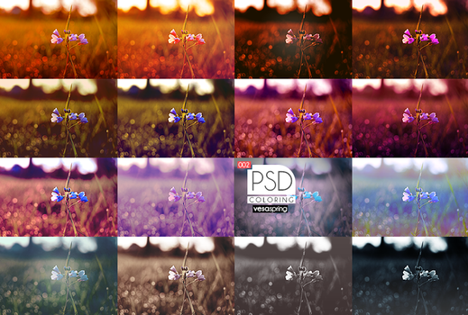 PSD Pack - Summer by vesaspring