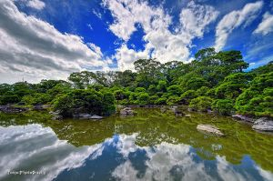 Japanese garden by TOMOHDR