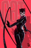 Cat Woman by Mattasama