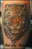 Kurt's Tiger by Reddogtattoo