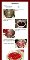Cranberry Sauce - Tutorial by ElwynAvalon
