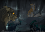 Tigerclaw's Fury. Ch. VII by Spirit-Of-Alaska
