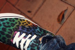 my vans. by itsbieberstyle