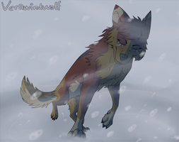 Against the odds by VeraWindWolf