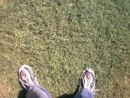 Grass Lawn complete with Shoes by WhiteMink