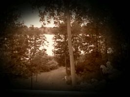 View of my Grandma's Lake (sepiatoned) by TheStaticStalker