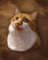 Tom the Cat Pet Portrait by PsychicPsycho