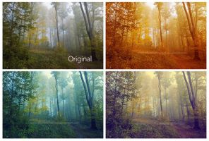 Photoshop Actions Forest actions exclusive by Designslots