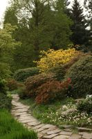 Spring path in a park by Nexu4
