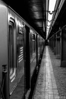 NYC Subway by slashero