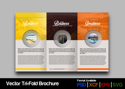 Trifold Brochure Concept #3 by ademalsasa