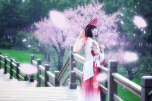 Samurai Warriors 3 Okuni Cosplay by jiaanxu