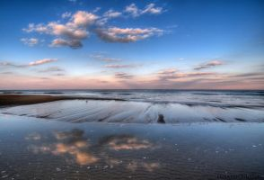 Reflection and the Gulls by Enkased