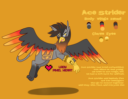 Ace Strider Character Reference Sheet OLD by chris9801