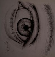 Eye wonder by eldon14