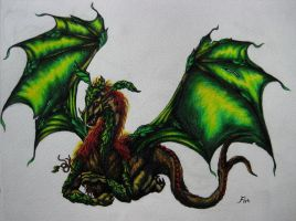 dragon with green heart by wildelbenreiter