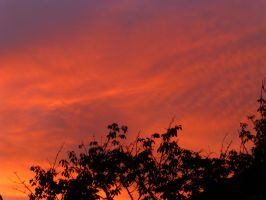 Stunning Sunset Over Thornaby 2 by illusiveexistence