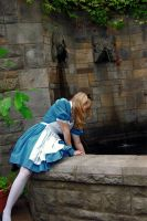 Alice and the Fountain by RachellaJH