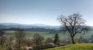 cloudless spring by Springstein