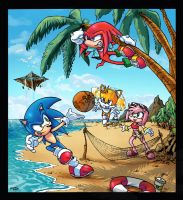 Sonic and friend's summer by sonicboom35