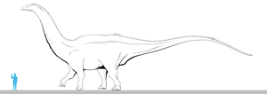Apatosaurus (OMNH 1670) line art by oghaki