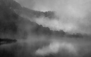 Foggy scape by lomatic