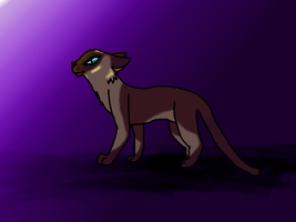 Old, unfinished Siamese cat picture. xD by Wolfcubzelda