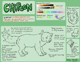 Chipoon Species sheet by NAMEY-D0G