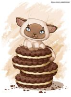 Cookie kitty by LiaSelina