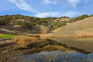 Sonoma Pond Scape - Exclusive HDR Stock by somadjinn