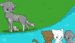 Warrior Cats by breebree223