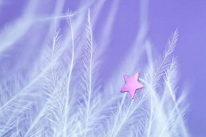 The second star to the right.. by Chansie