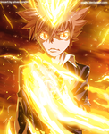 Tsuna by aagito