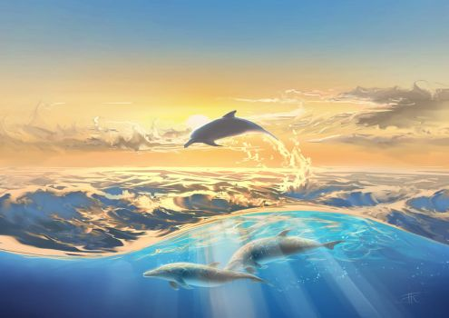 Dolphins by aerroscape