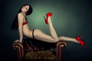 The Red Shoes 08 by Boas73