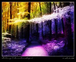 Pathway To Somewhere Magical by mskate