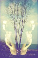 Double nature by LosAlamos