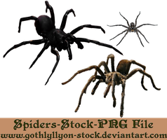 Spiders-Stock-by-GothLyllyOn-Stock by GothLyllyOn-Sotck