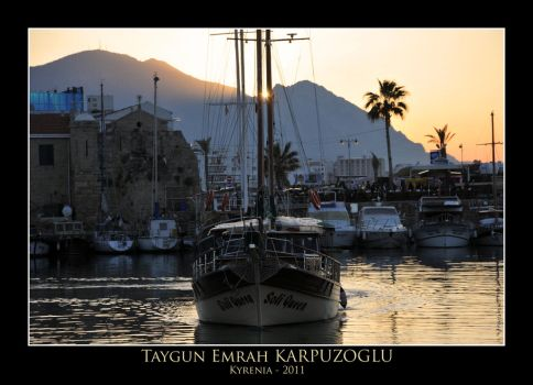 Yacht, Palm and Sun by TagyK1
